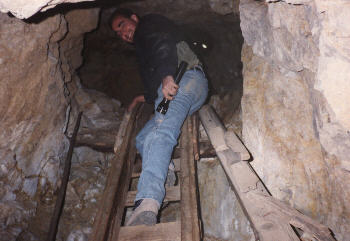 come on up...its safe!